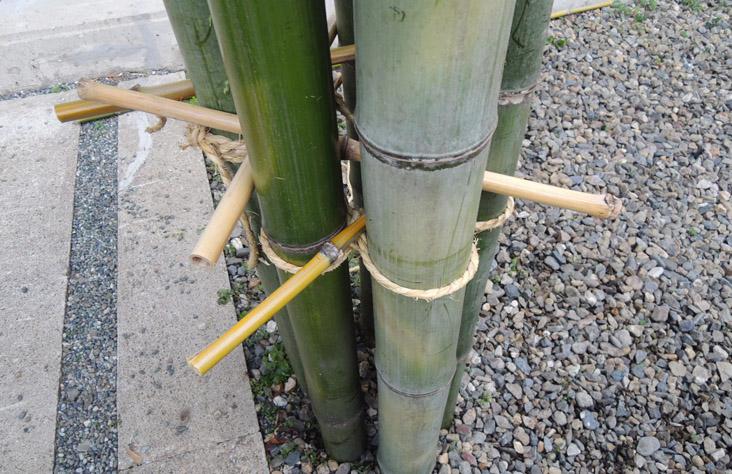 todd hagino 151202 bamboo installation experiment  DSCN8085