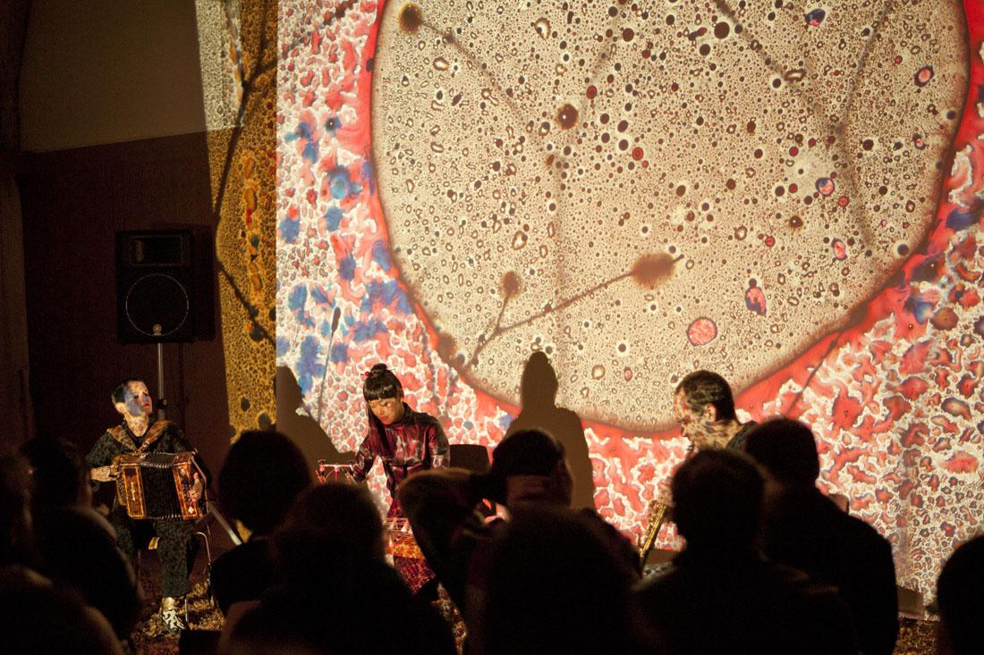 Concert Rhizottome - Villa Kujoyama - Crédit Arnaud Rodriguez