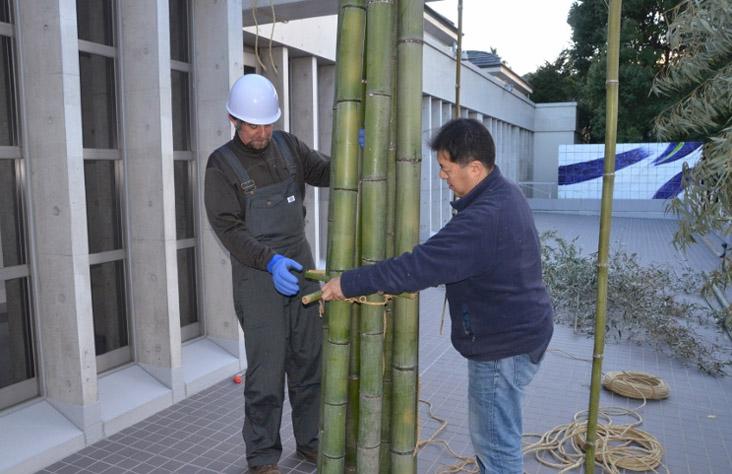 todd hagino 151208 bamboo forest DSC_7163