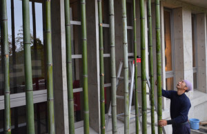 Todd and Hagino 151211 Bamboo peristyle